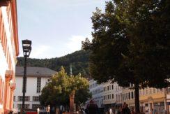 初めての海外で始めてのドイツ留学!不安もあったけど楽しかったです【ひろなりさん】